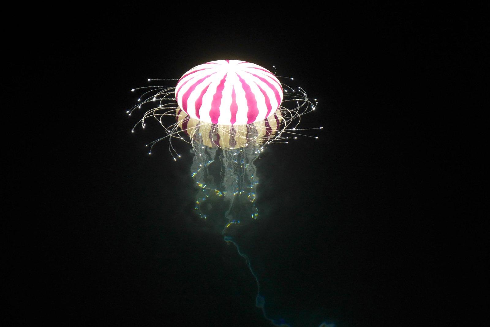Meduze-Cikat-bay-4